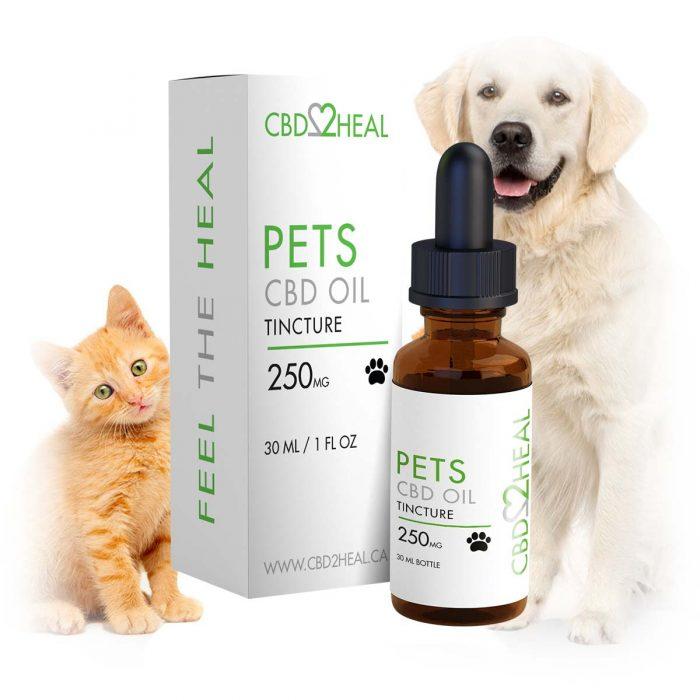CBD Oil Pets 250mg