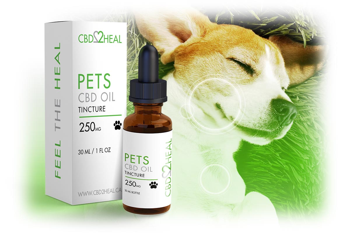 Pets CBD Oil 250mg